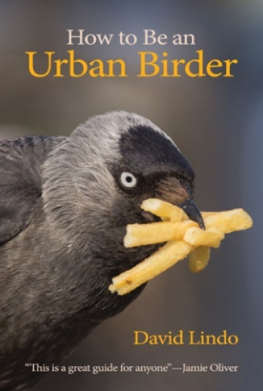 How to Be an Urban Birder – David Lindo